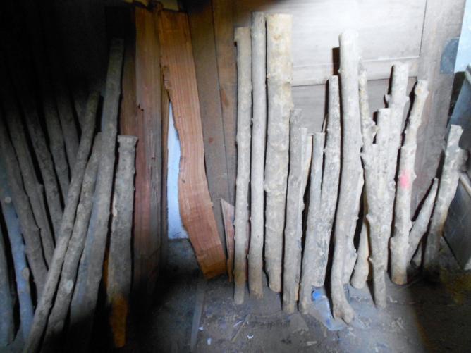 01 Dans la réserve de bois sec,
