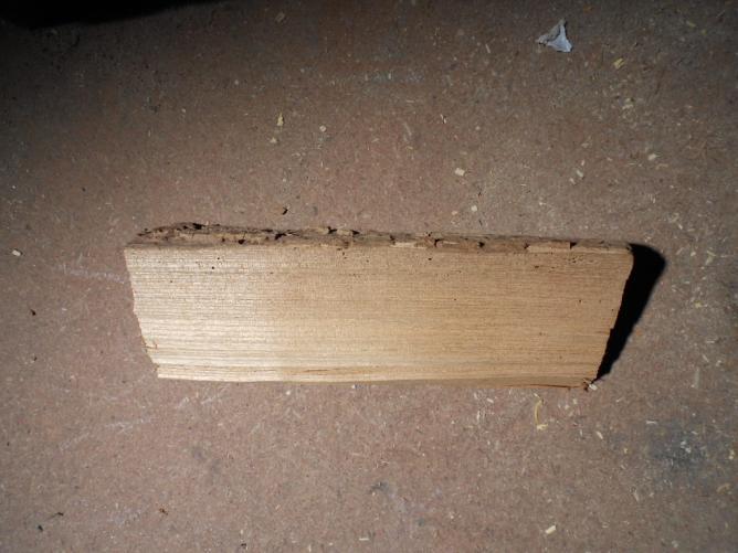 01 Choisir une bûche de bois,