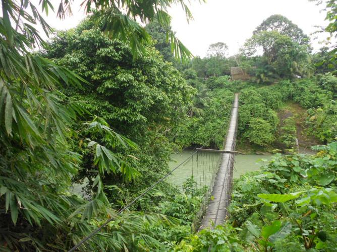 26. Jungle bridge - Sumatra 2013